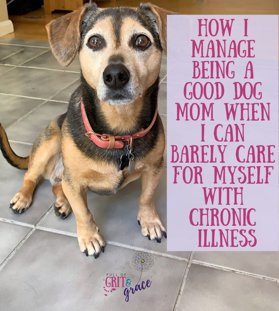 How I manage being a good dog mom when I can barely care for myself with chronic illness. Read my tried and true strategies.