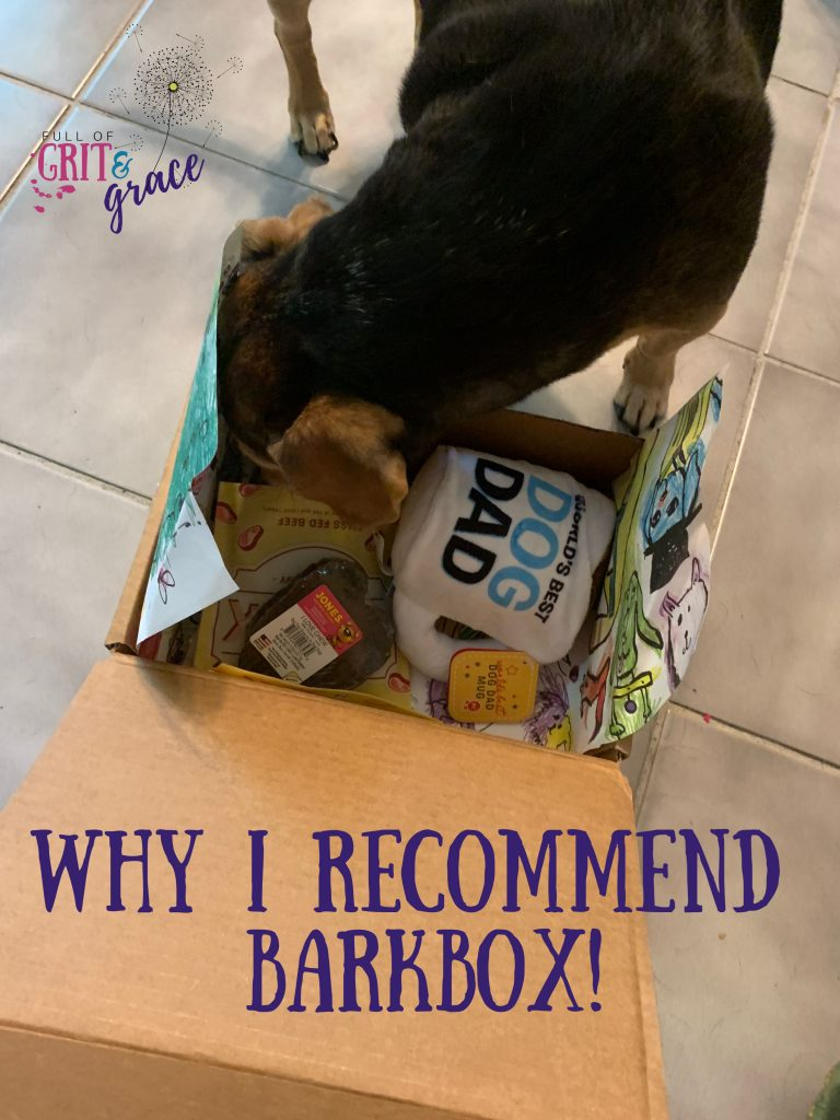 Why I recommend Barkbox for anyone with a pet, especially if you're also living with a chronic illness!