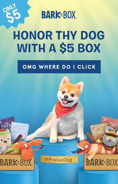 $5 barkbox to celebrate national dog day!