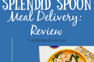 Splendid Spoon Meal Delivery Service: A full review from a non-vegan who has tried every meal delivery service out there! How is this one? Surprisingly great!